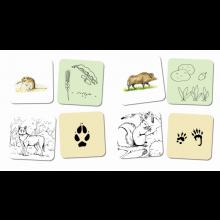 Samtalekort - Skogens dyr