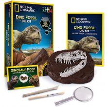 Grav ut dinosaur fossiler