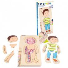 Anatomisk puslespill - Liten gutt