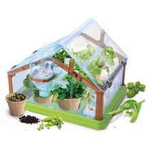 Drivhus - Lær om økologisk dyrking