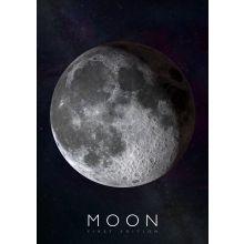 Interaktiv plakat - Månen