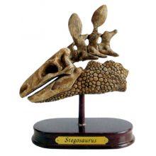 Utgravingssett - Stegosaurus