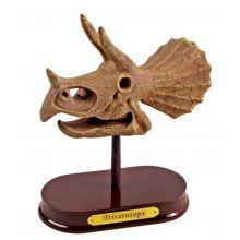 Utgravingssett - Triceratops