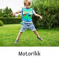 Motorikk